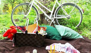 Co przygotować na piknik?