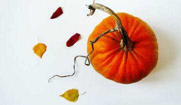 Zdrowe jedzenie, Halloween i klocki LEGO [Yesterday #1]