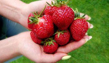 Jakie warzywa i owoce jeść w czerwcu?